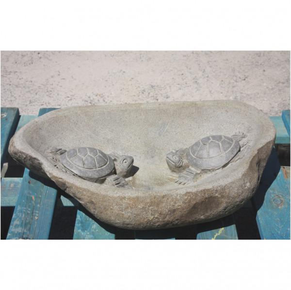 Vogeltränke Schildkröte