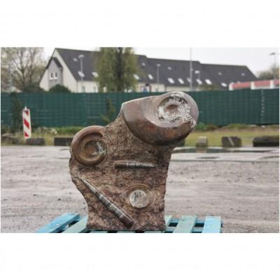Ammonit Versteinert