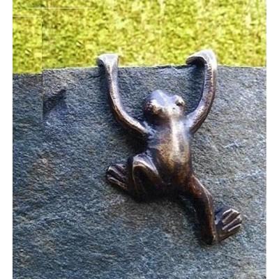 Frosch kletternd