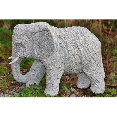 Elefant Benjamin R