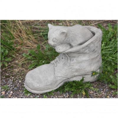 Katze im Schuh