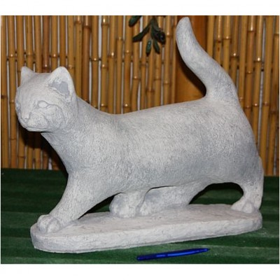 Katze stehend