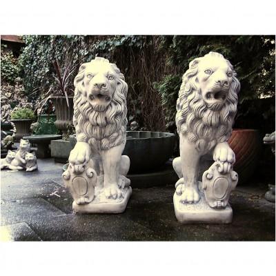 Löwen (Set )