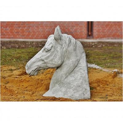 Pferde Kopf, groß