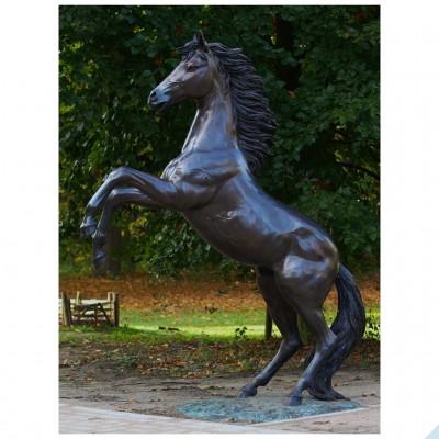 Pferd 228 H
