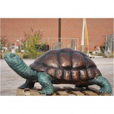 Schildkröte Riesig