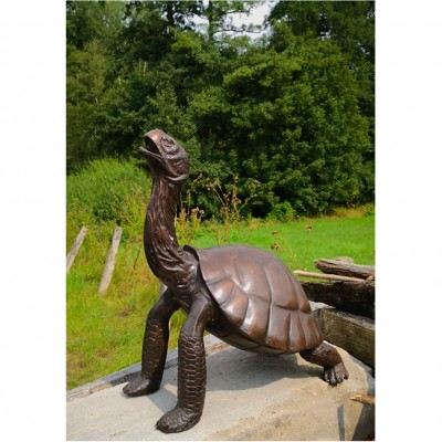 Bronze Schildkröte