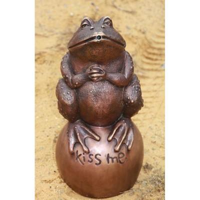 Frosch Kiss me