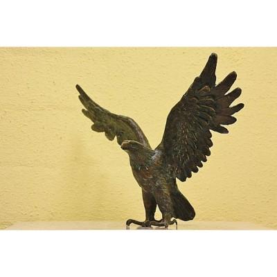 Bronze Seeadler