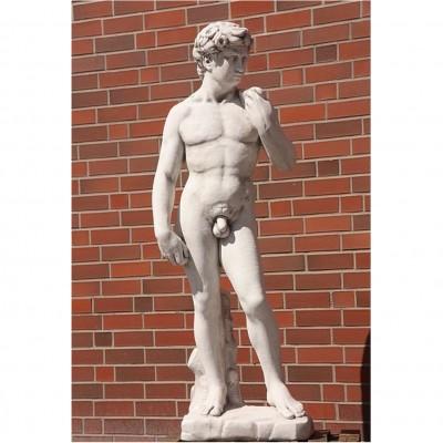 David 170 cm H