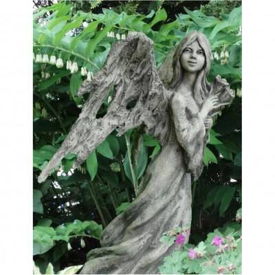 Engel Heal
