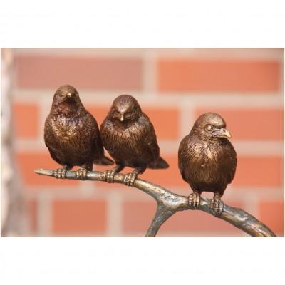 Drei Vögel auf Ast
